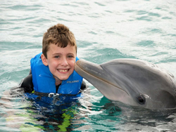 Kid With Dolphin
